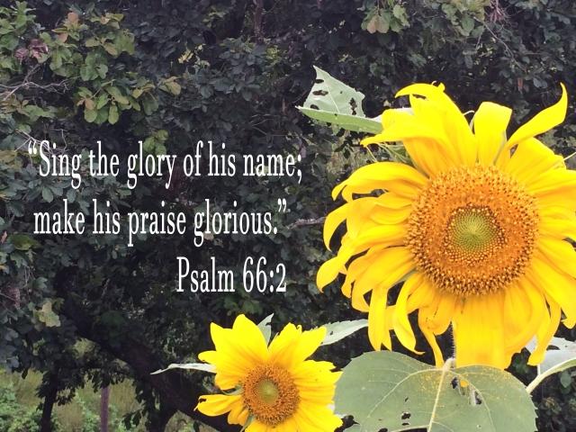 Glory Psalm 662